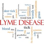 What is Lyme Disease – an Emerging Epidemic?